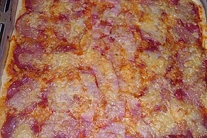 Pizzaboden - dünn und knusprig 91