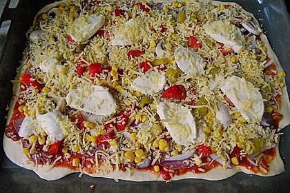Pizzaboden - dünn und knusprig 76