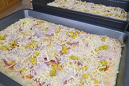 Pizzaboden - dünn und knusprig 46