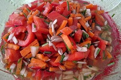 Paprika - Zwiebel - Salat 18