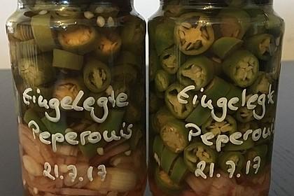Eingelegte Chilischoten oder Peperoni 2