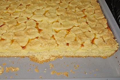 Pudding - Streuselkuchen 4