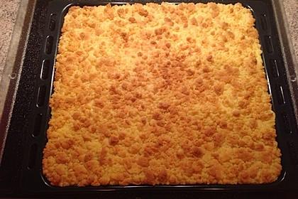 Pudding - Streuselkuchen 7