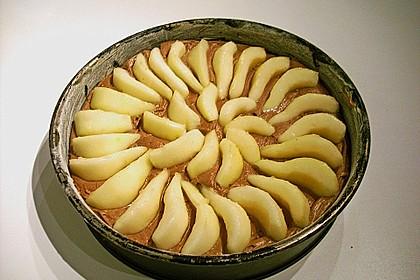 Birnenkuchen mit dem schokoladigsten Schoko - Schokoladen - Schock 18