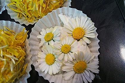 Bunte Blütenbällchen 9
