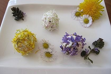 Bunte Blütenbällchen 5