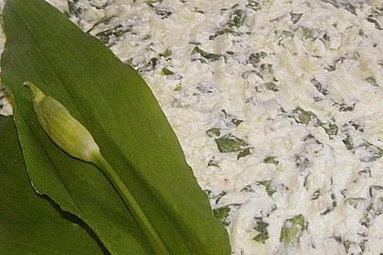 Bärlauch - Schafskäsecreme 11