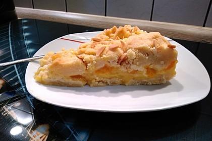 Streuselkuchen mit Pudding 24