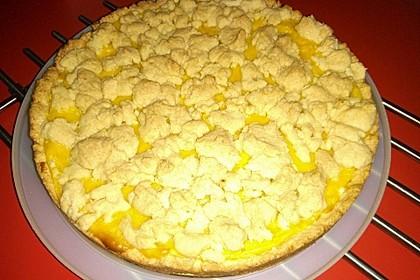 Streuselkuchen mit Pudding 33