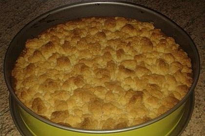 Streuselkuchen mit Pudding 46