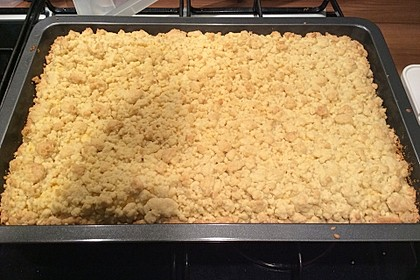 Streuselkuchen mit Pudding 35