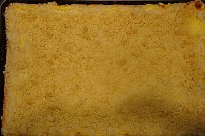 Streuselkuchen mit Pudding 58