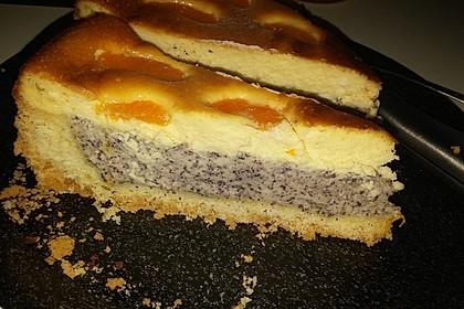 Mohn-Schmand Kuchen 18