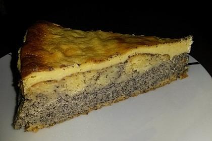 Mohn-Schmand Kuchen 20