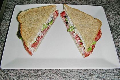 Salami Sandwich 1