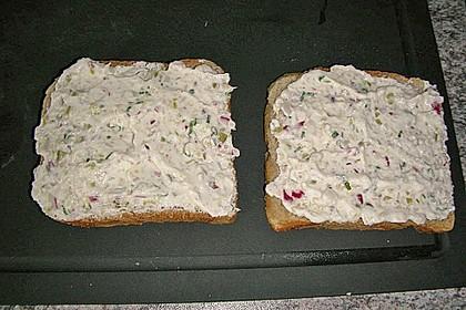 Salami Sandwich 6