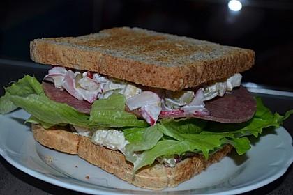 Salami Sandwich 3