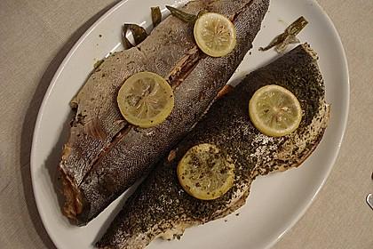 Ganzer Lachs aus dem Ofen 3