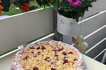 Ribisel-Topfen Kuchen mit Streusel 16