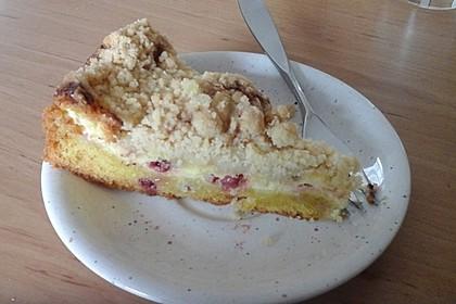 Ribisel-Topfen Kuchen mit Streusel 39
