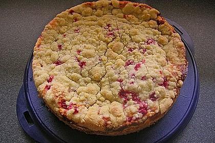 Ribisel-Topfen Kuchen mit Streusel 10