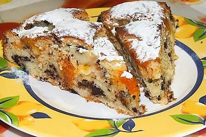Ameisen-Marillenkuchen mit Puddingfüllung 17