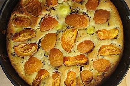 Ameisen-Marillenkuchen mit Puddingfüllung 49