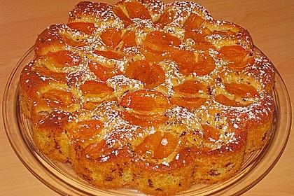 Ameisen-Marillenkuchen mit Puddingfüllung 60