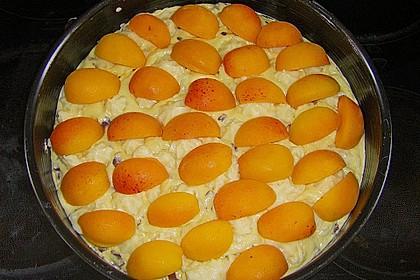 Ameisen-Marillenkuchen mit Puddingfüllung 69