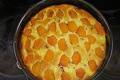 Ameisen-Marillenkuchen mit Puddingfüllung 58