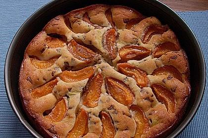 Ameisen-Marillenkuchen mit Puddingfüllung 16