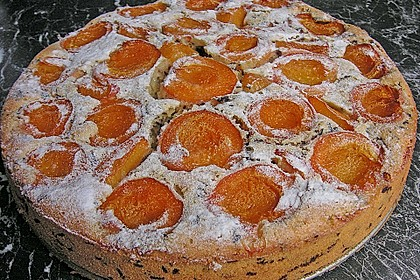Ameisen-Marillenkuchen mit Puddingfüllung 9