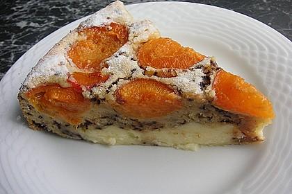 Ameisen-Marillenkuchen mit Puddingfüllung 1