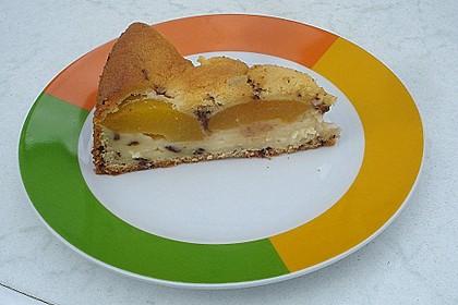 Ameisen-Marillenkuchen mit Puddingfüllung 64
