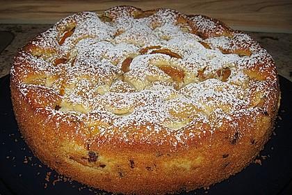 Ameisen-Marillenkuchen mit Puddingfüllung 23