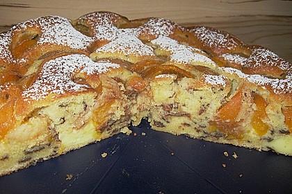 Ameisen-Marillenkuchen mit Puddingfüllung 55