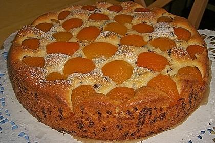 Ameisen-Marillenkuchen mit Puddingfüllung 24