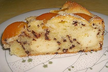 Ameisen-Marillenkuchen mit Puddingfüllung 13