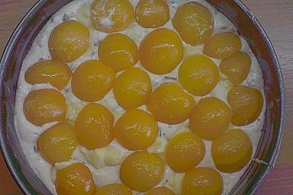 Ameisen-Marillenkuchen mit Puddingfüllung 74