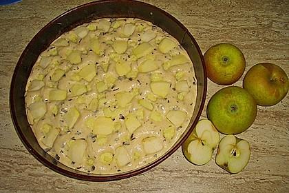Ameisen-Marillenkuchen mit Puddingfüllung 72