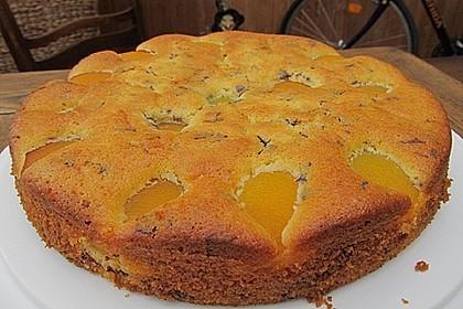 Ameisen-Marillenkuchen mit Puddingfüllung (Bild)