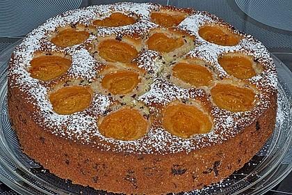 Ameisen-Marillenkuchen mit Puddingfüllung 31