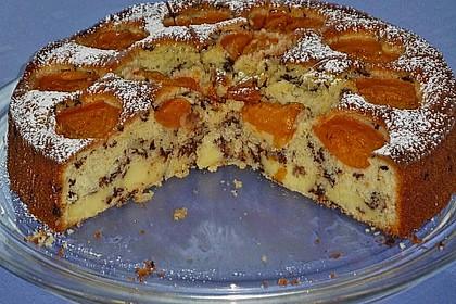 Ameisen-Marillenkuchen mit Puddingfüllung 20