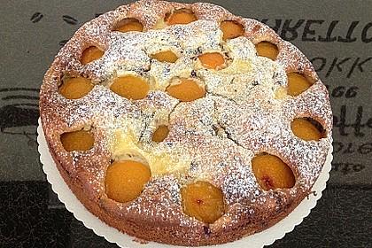 Ameisen-Marillenkuchen mit Puddingfüllung 37
