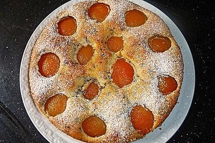 Ameisen-Marillenkuchen mit Puddingfüllung 18