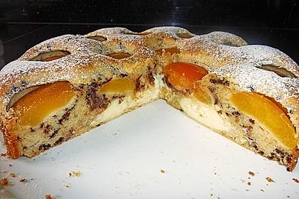 Ameisen-Marillenkuchen mit Puddingfüllung 14