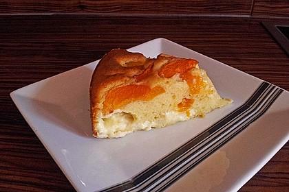 Ameisen-Marillenkuchen mit Puddingfüllung 47