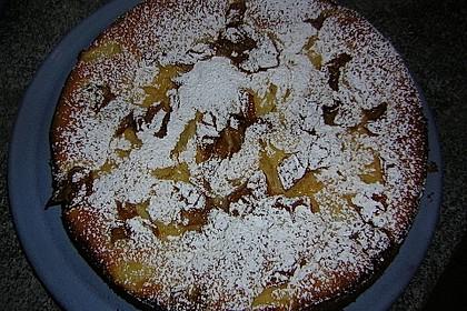 Ameisen-Marillenkuchen mit Puddingfüllung 51