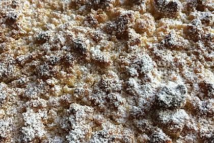 Rhabarberkuchen mit Vanillecreme und Streusel 64