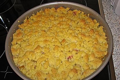 Rhabarberkuchen mit Vanillecreme und Streusel 136